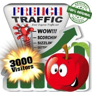 buy 3000 french traffic visitors from France