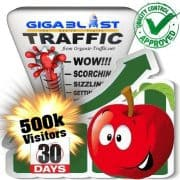 buy 500.000 gigablast search traffic visitors in 30days