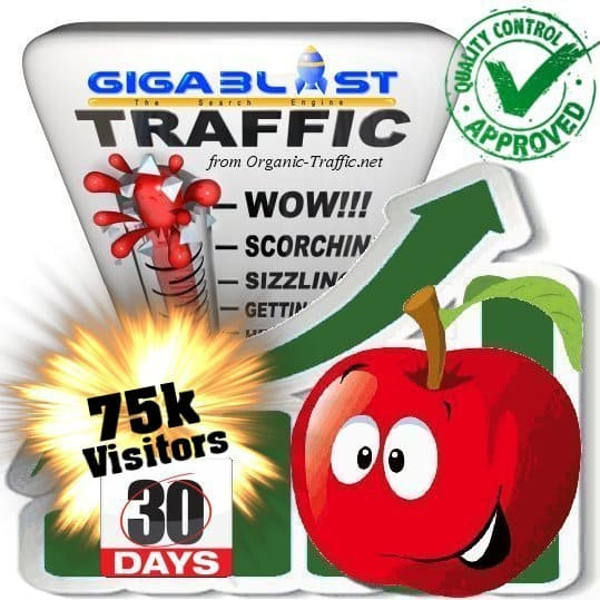 buy 75.000 gigablast search traffic visitors in 30days