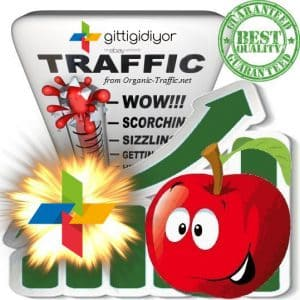 Buy Website Traffic Gittididiyor.com