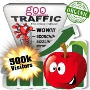 goo organic traffic visitors