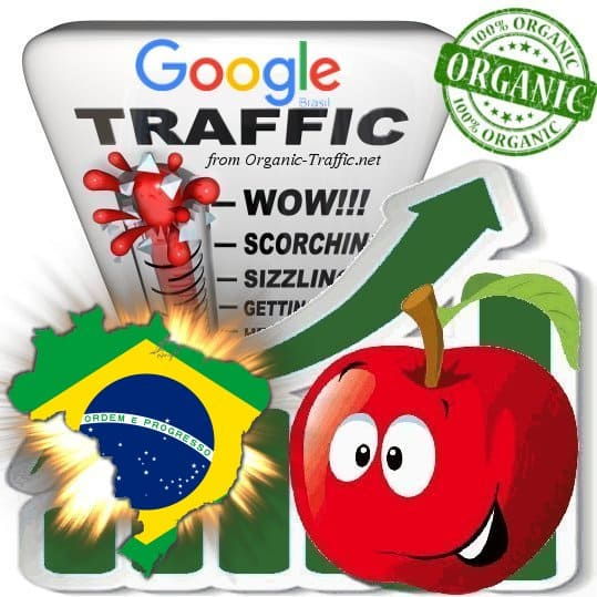 Google Brasil Web Traffic Service