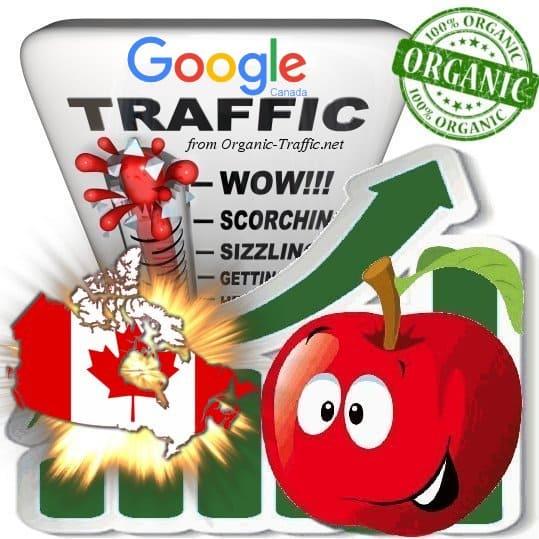 Google Canada Web Traffic Service