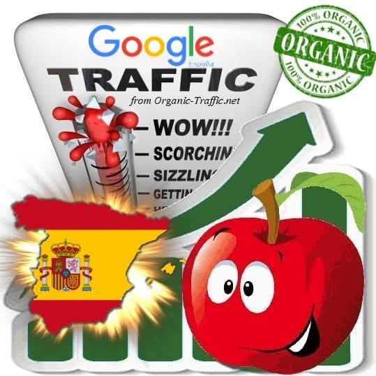 Google España Web Traffic Service