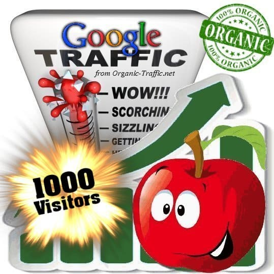 1000 google organic traffic visitors