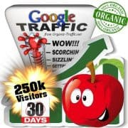 250k google organic traffic visitors within 30days