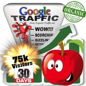 buy 75k google organic traffic visitors 30days