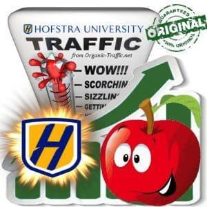 Buy University Traffic - Hofstra.edu