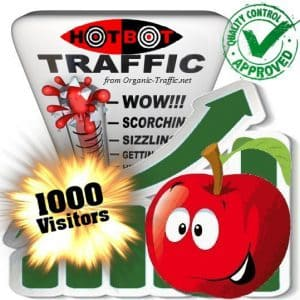 buy 1000 hotbot search traffic visitors