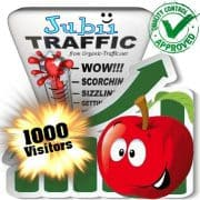 buy 1000 jubii search traffic visitors