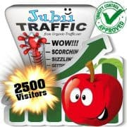 buy 2500 jubii.dk search traffic visitors