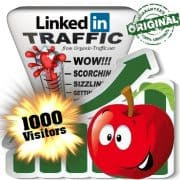 buy 1000 linkedin social traffic visitors
