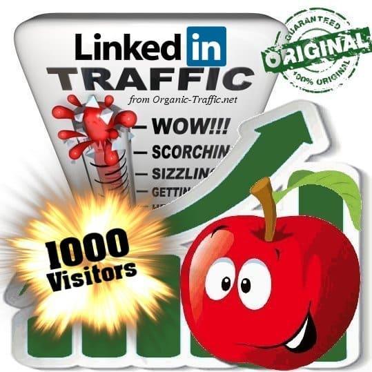 buy 1000 linkedin social traffic visitors