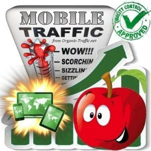 mobile traffic visitors