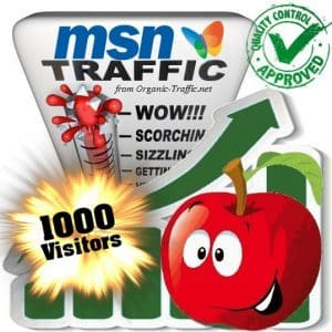 buy 1000 msn search traffic visitors