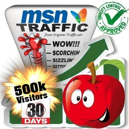 buy 500.000 msn search traffic visitors within 30 days