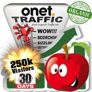 buy 250k onet organic traffic visitors for 30days