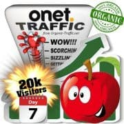 onet organic traffic visitors 7days 20k