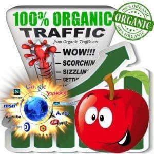buy organic traffic visitors