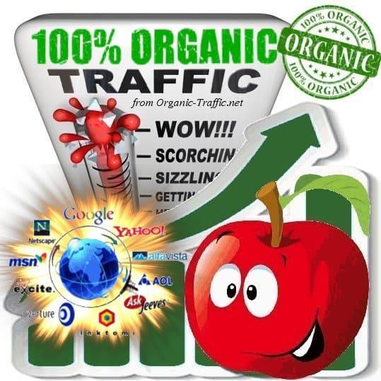 Buy Organic Traffic - Buy Web Traffic Service - Buy ...