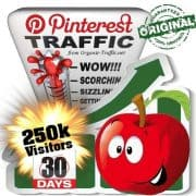 buy 250k pinterest social traffic visitors 30 days