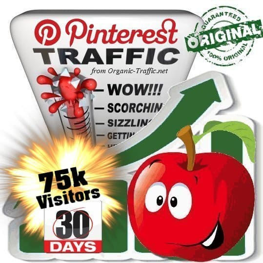 buy 75k pinterest social traffic visitors 30 days