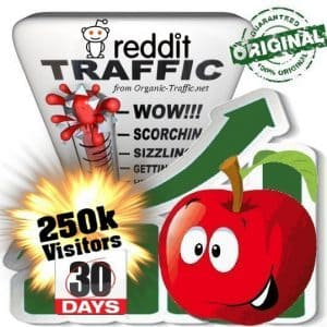 250k reddit social traffic visitors in 30 days