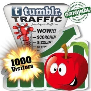 buy 1000 tumblr social traffic visitors