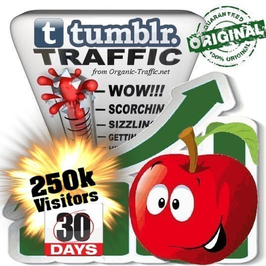buy 250k tumblr social traffic visitors in 30 days