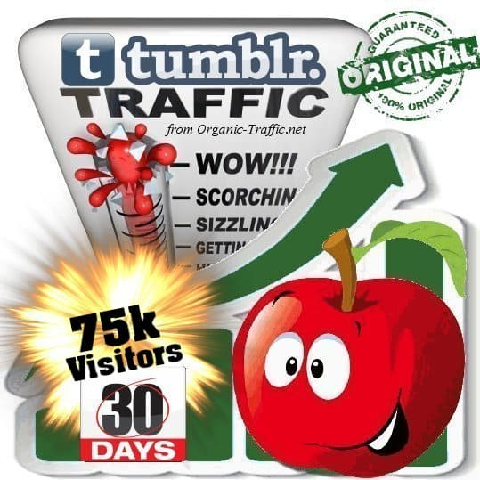 buy 75k tumblr social traffic visitors in 30 days