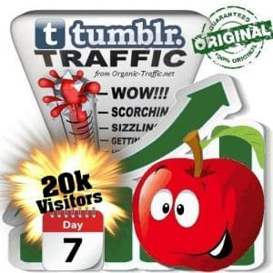 buy 20k tumblr social traffic visitors in 7 days