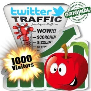 buy 1000 twitter social traffic visitors