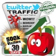 buy 500k twitter social traffic visitors within 30 days
