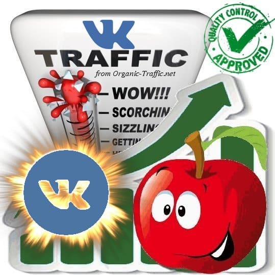 Buy Vk.com Website Traffic