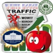 Buy The White House Web Traffic