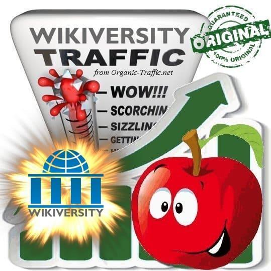 Buy Wikiversity Web Traffic Service