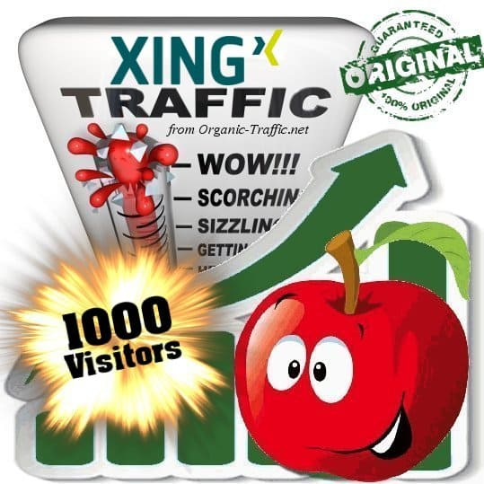 buy 1000 xing social traffic visitors