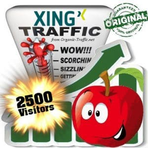 buy 2500 xing social traffic visitors