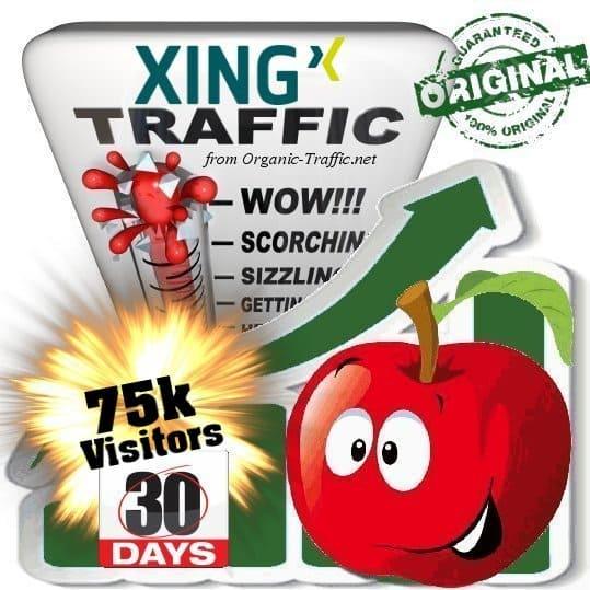 buy 75k xing social traffic visitors in 30 days