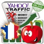 Yahoo France Web Traffic Service