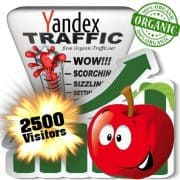 2500 yandex organic traffic visitors
