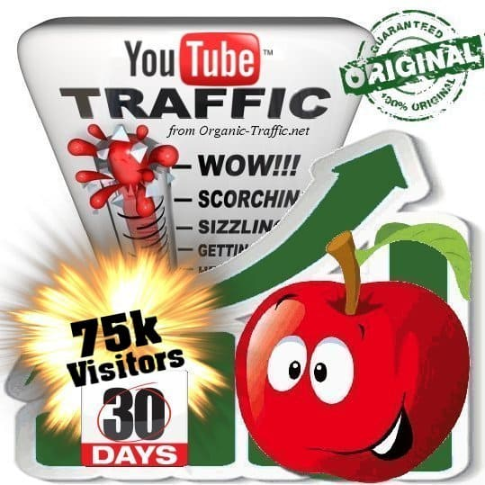 buy 75k youtube social traffic visitors in 30 days